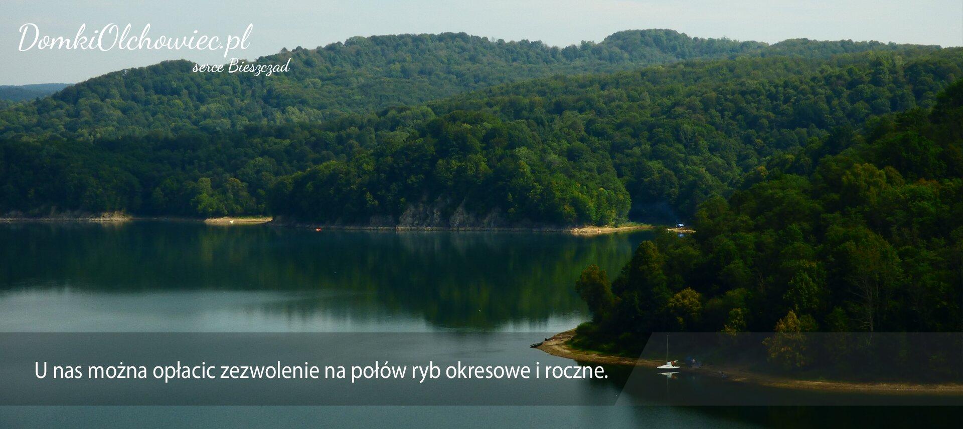 Modernistyczne Wynajem domków SOLINA - Domki Olchowiec - Domki na wynajem w CN62